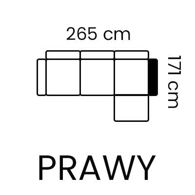aloe 2rc-1sw prawy