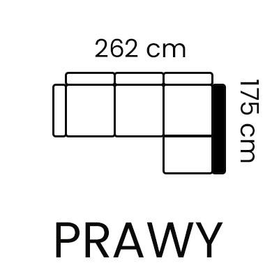 dianthus 2rc 1,5sw prawy